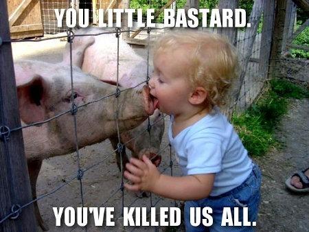 Origine de la grippe porcine