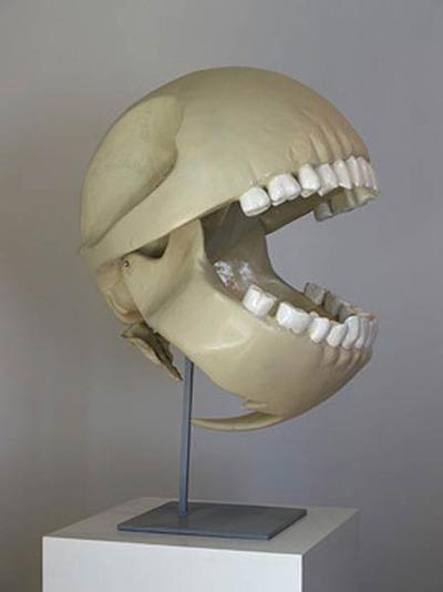 Un squelette de Pac Man a été découvert!