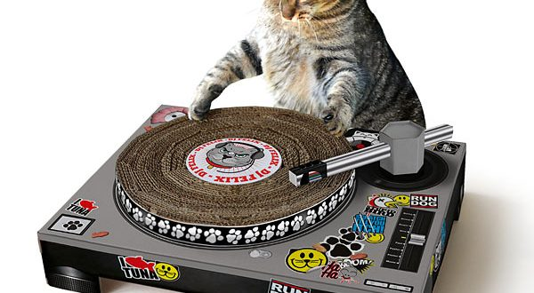 grattoir-dj-chat
