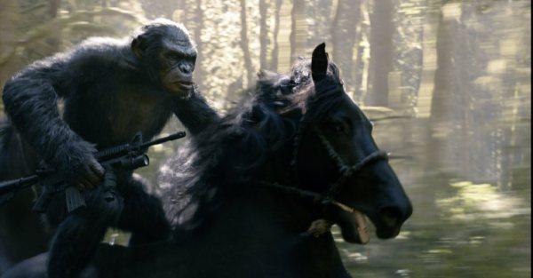 L'Aube de la planète des singes: 203 937 551$