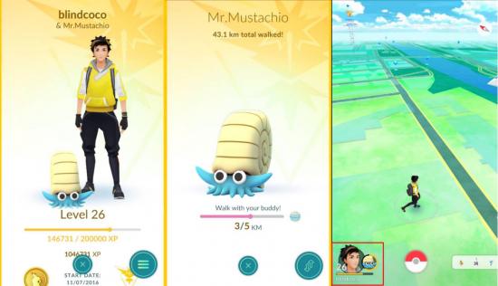 Pokémon GO Copain