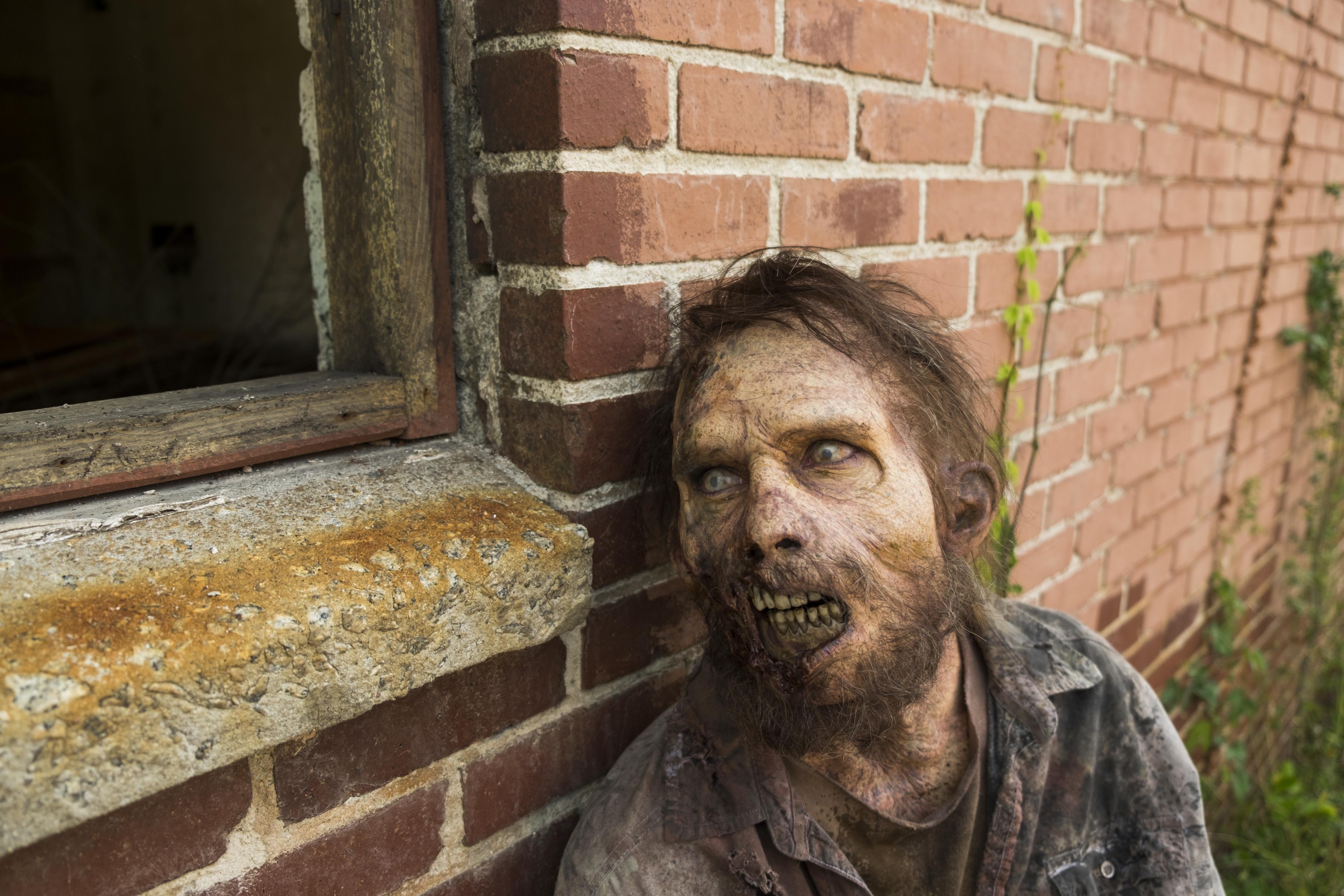 Walker- The Walking Dead Saison 7 Épisode 2 - Photo: Gene Page/AMC