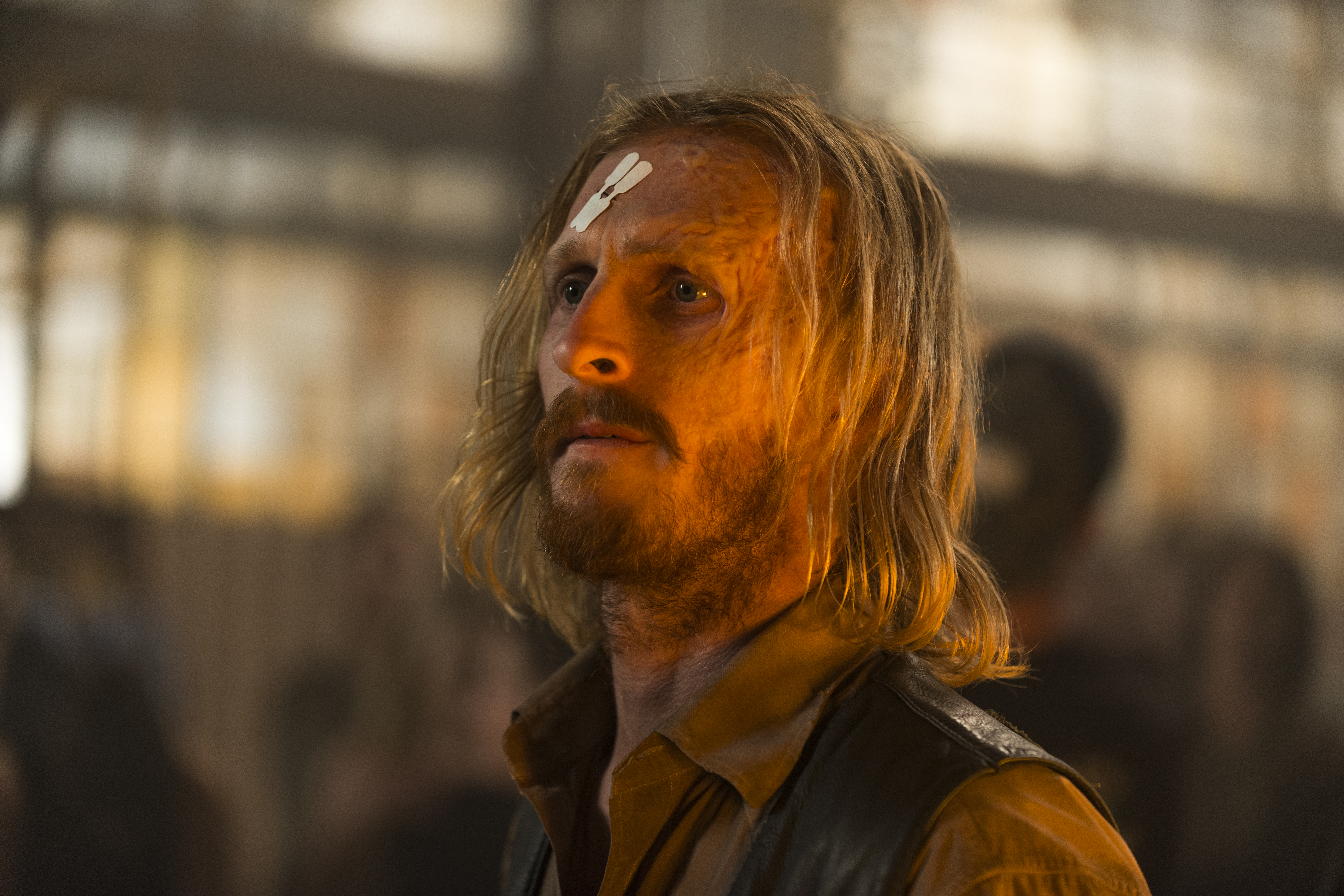 Austin Amelio - Dwight - The Walking Dead Saison 7 Épisode 11 - Photo : Gene Page/AMC