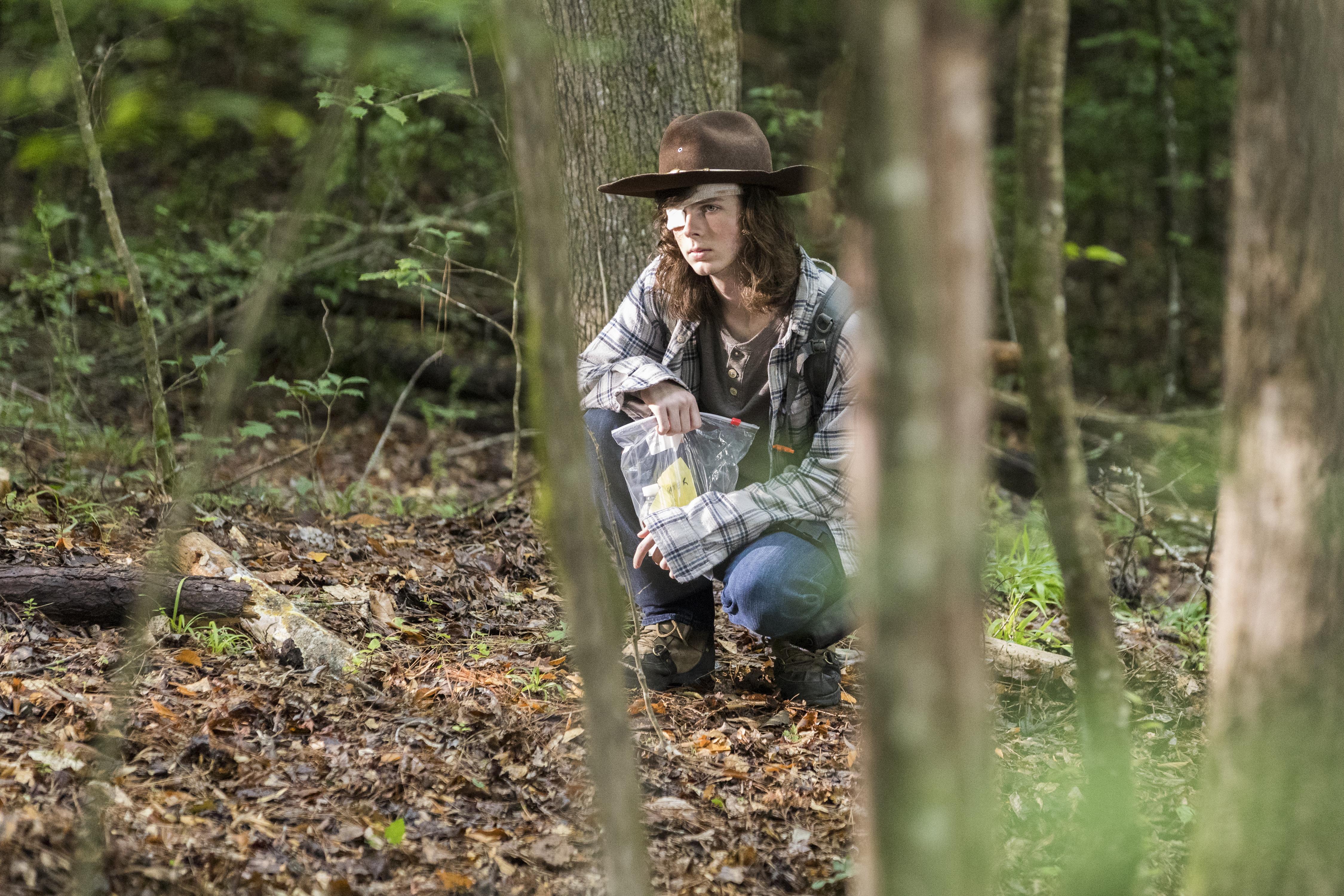 Carl Grimes (Chandler Riggs) - The Walking Dead Saison 8 Épisode 6 - Photo : Jackson Lee Davis/AMC