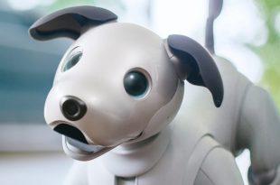 aibo le chien-robot de Sony
