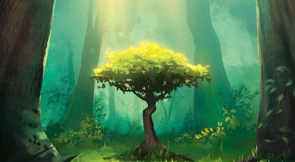 Photosynthesis : une expérience surprenante