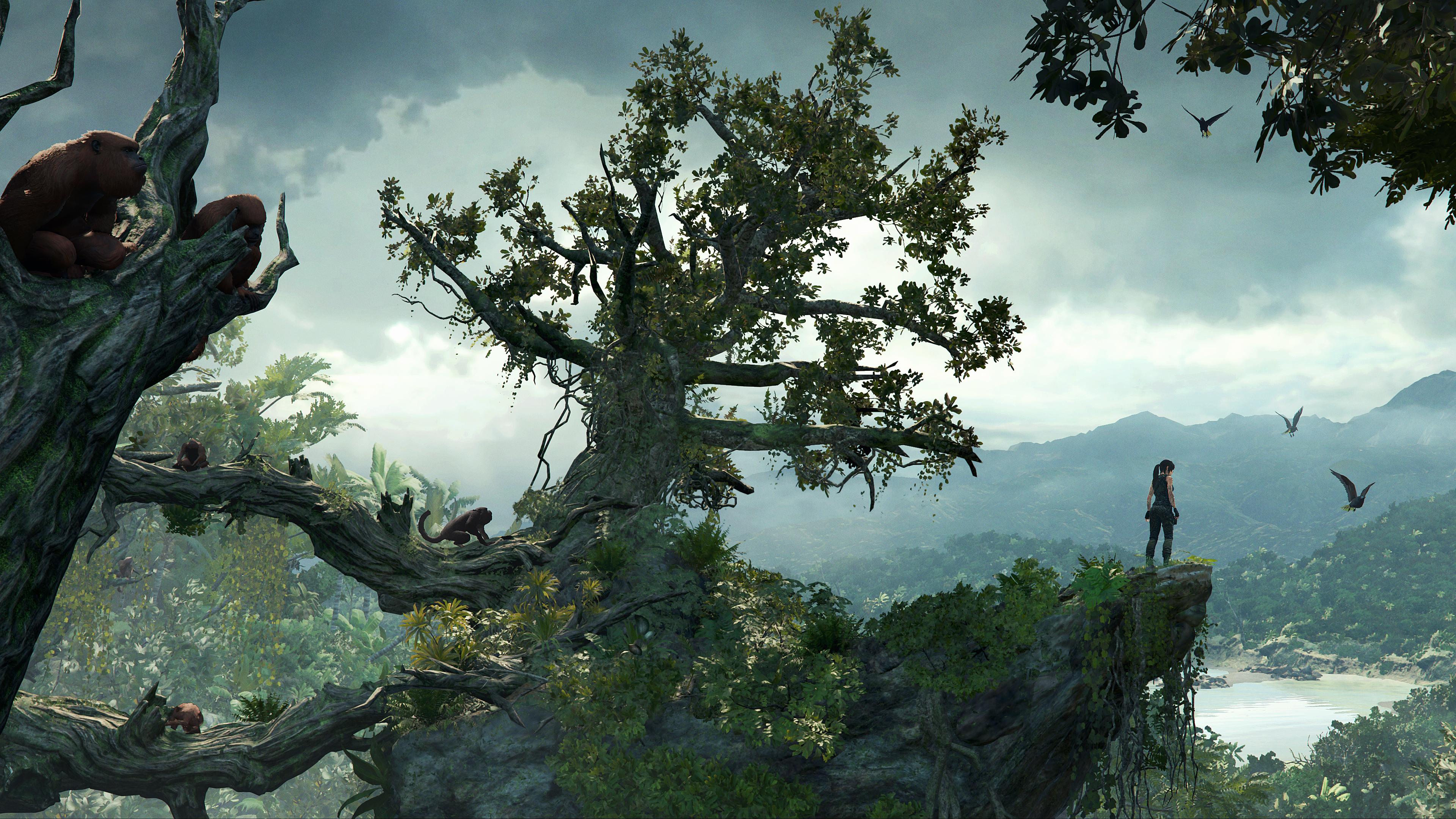 Après les montagnes de la Sibérie dans Rise of the Tomb Raider, c'est maintenant la jungle péruvienne qui sert de décor à la nouvelle aventure de Lara Croft