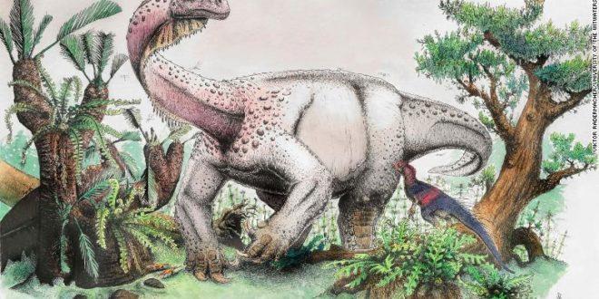 Une nouvelle espèce de dinosaure découverte en Afrique du Sud
