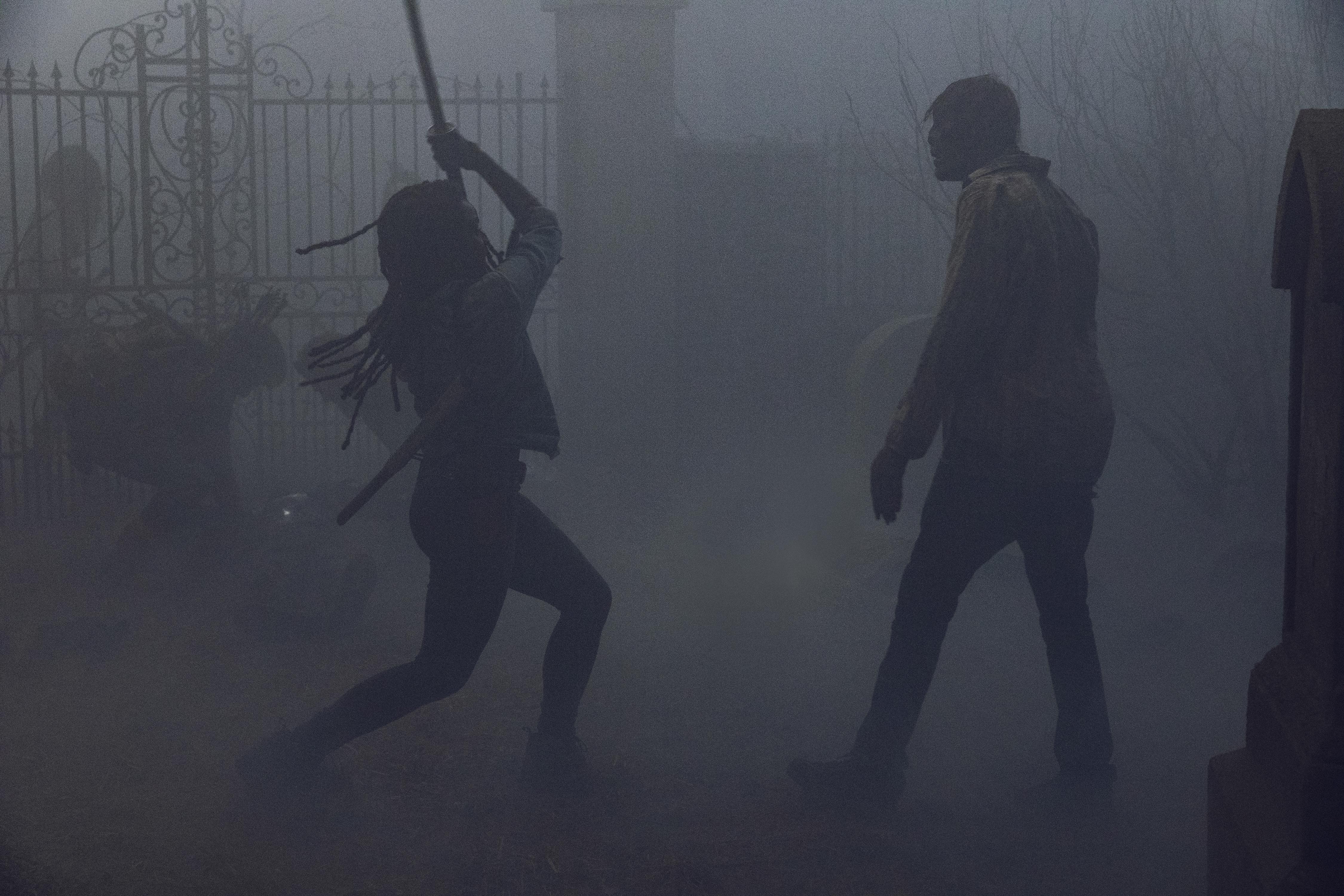 Michonne (Danai Gurira) protège les siens pendant qu'ils fuient le cimetière - The Walking Dead - Saison 9, Épisode 9 - Crédit Photo : Jackson Lee Davis/AMC