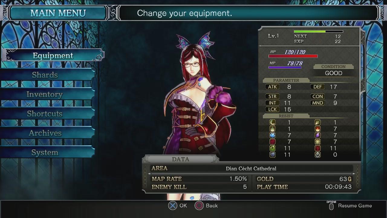 Le jeu regorge d'équipement que le personnage principal peut revêtir, ce qui changera son apparence et ses aptitudes.