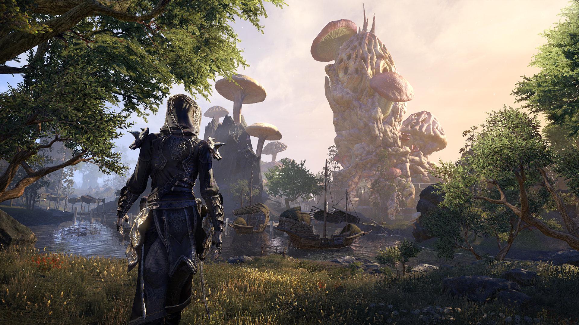 ESO vous permet de revisiter des régions connues des vétérans, comme la province de Morrowind