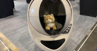 Litter-Robot Animaux