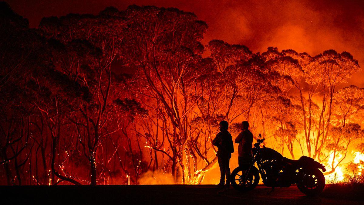 Les feux de forêt en Australie ont déjà dévasté plus de 110,000km² de territoire